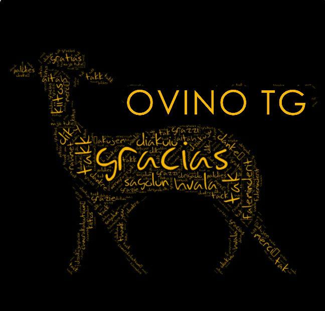 gracias oveja dorada con letras